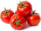 produzione pomodoro ciliegino